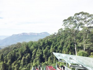 Scenic World in the Blue Mountains (3)