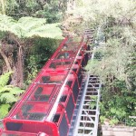Scenic World in the Blue Mountains (4)